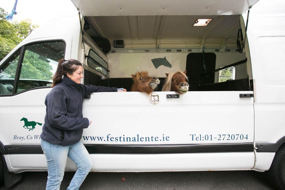 Ponies from Festina Lente visit Saint Augustine's School